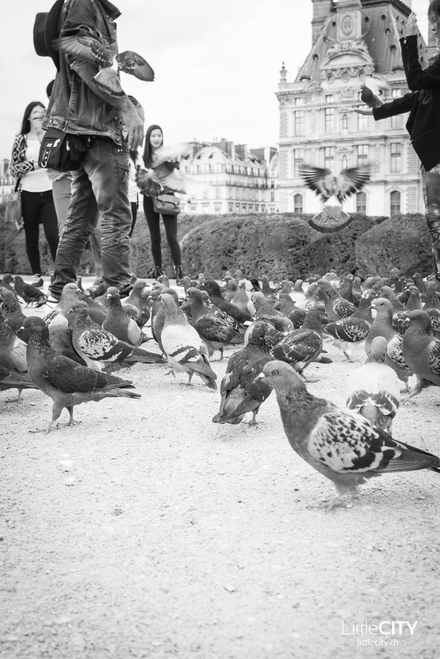Paris Oktober 2014_9 (52 von 132) - Kopie