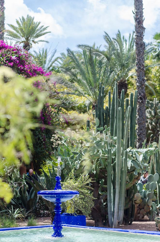 Marrakesch_Gardens_2015_95-28