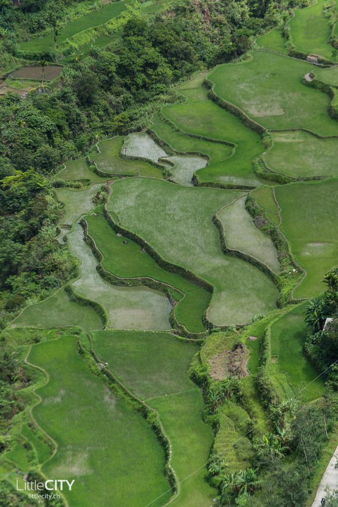 Banaue Reisterassen Ifugao 2015-23