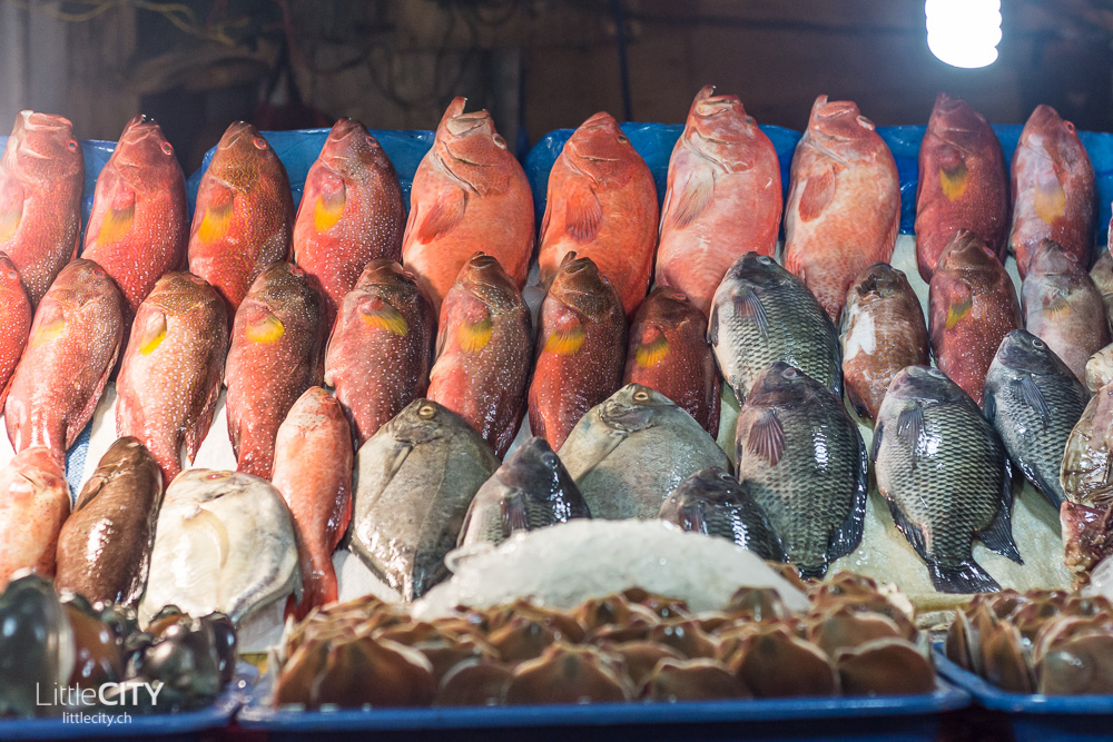 Manila Food Blog-2