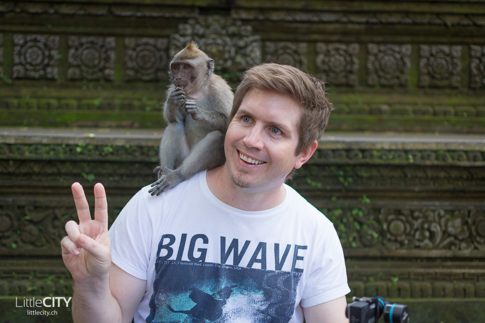 Monkey Forest Ubud Adislittlecity