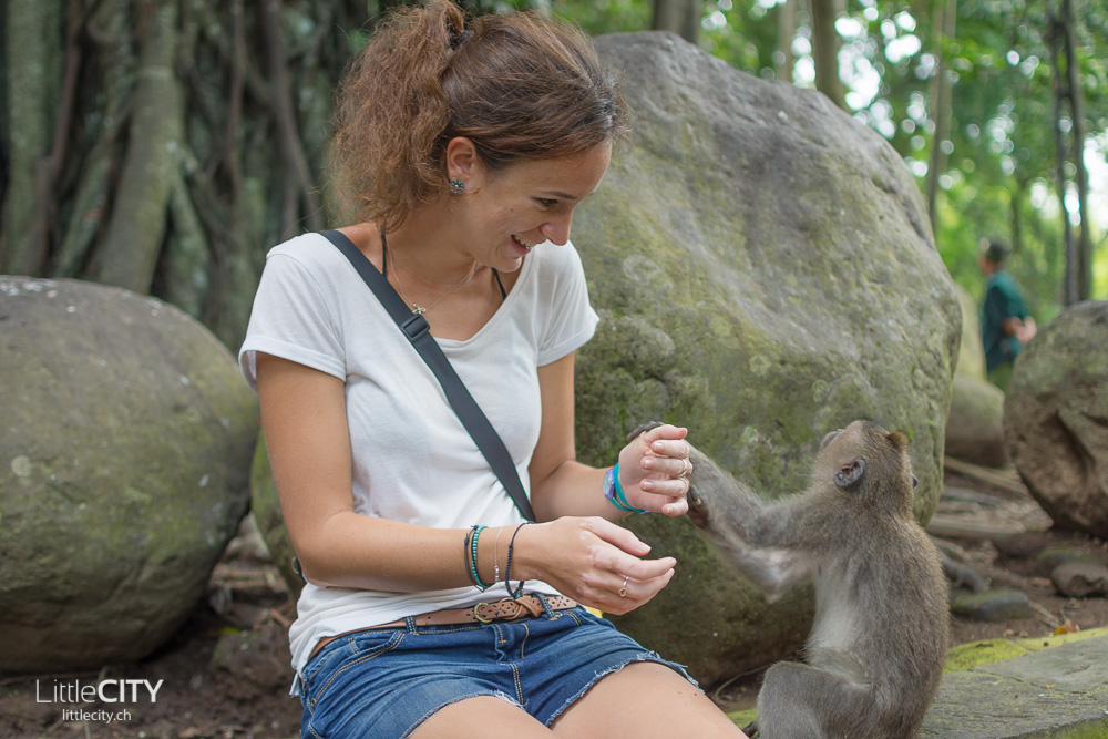 Monkey Forest Ubud 2015_w-7