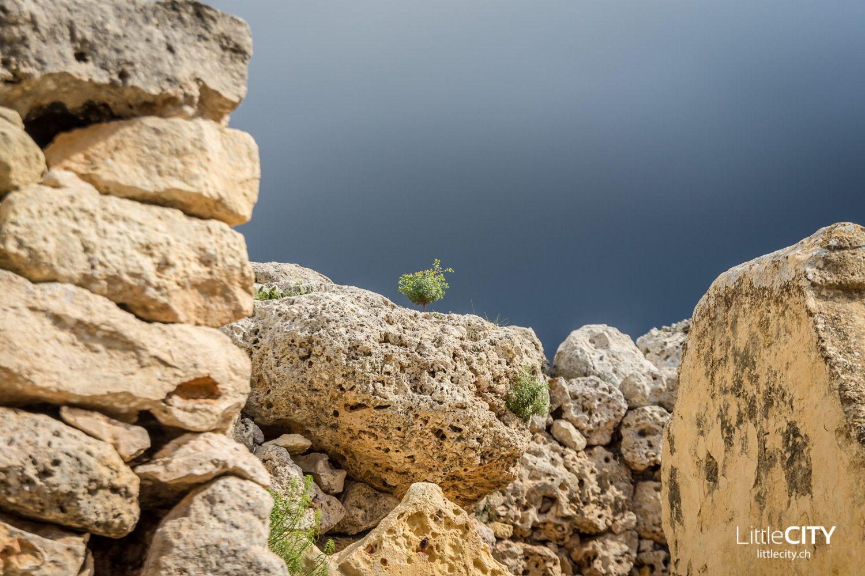 Gozo Malta Reisetipps