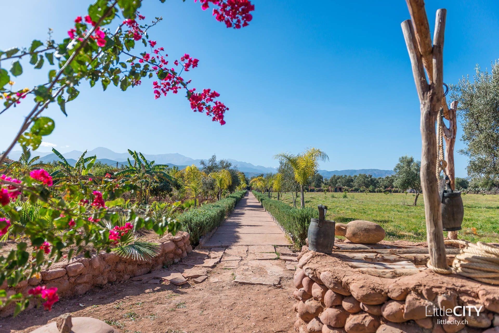 Marrakesch Reisetipps Paradis du Safran