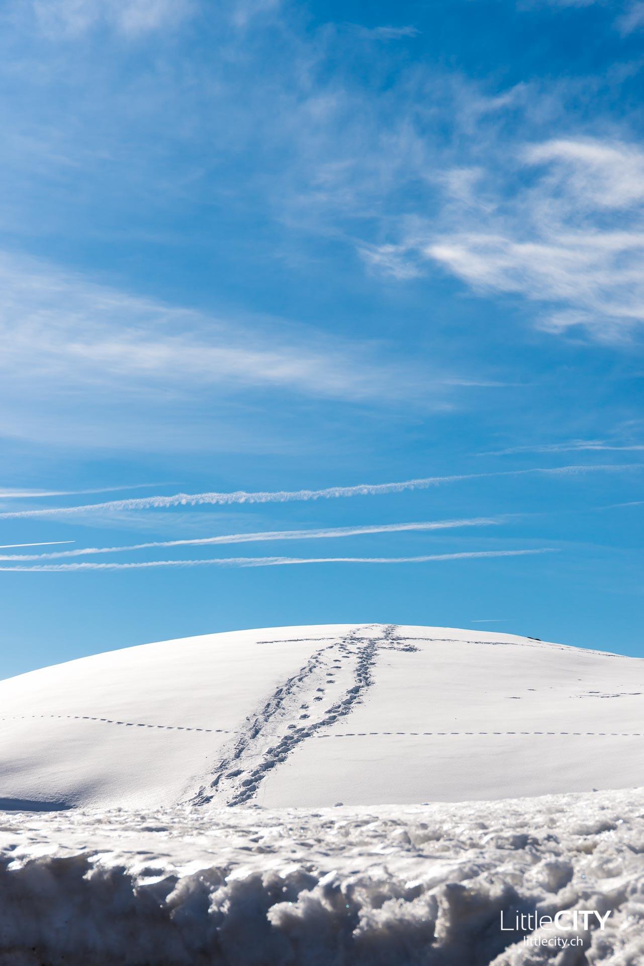 FIS Ski World Cup St. Moritz-1-2