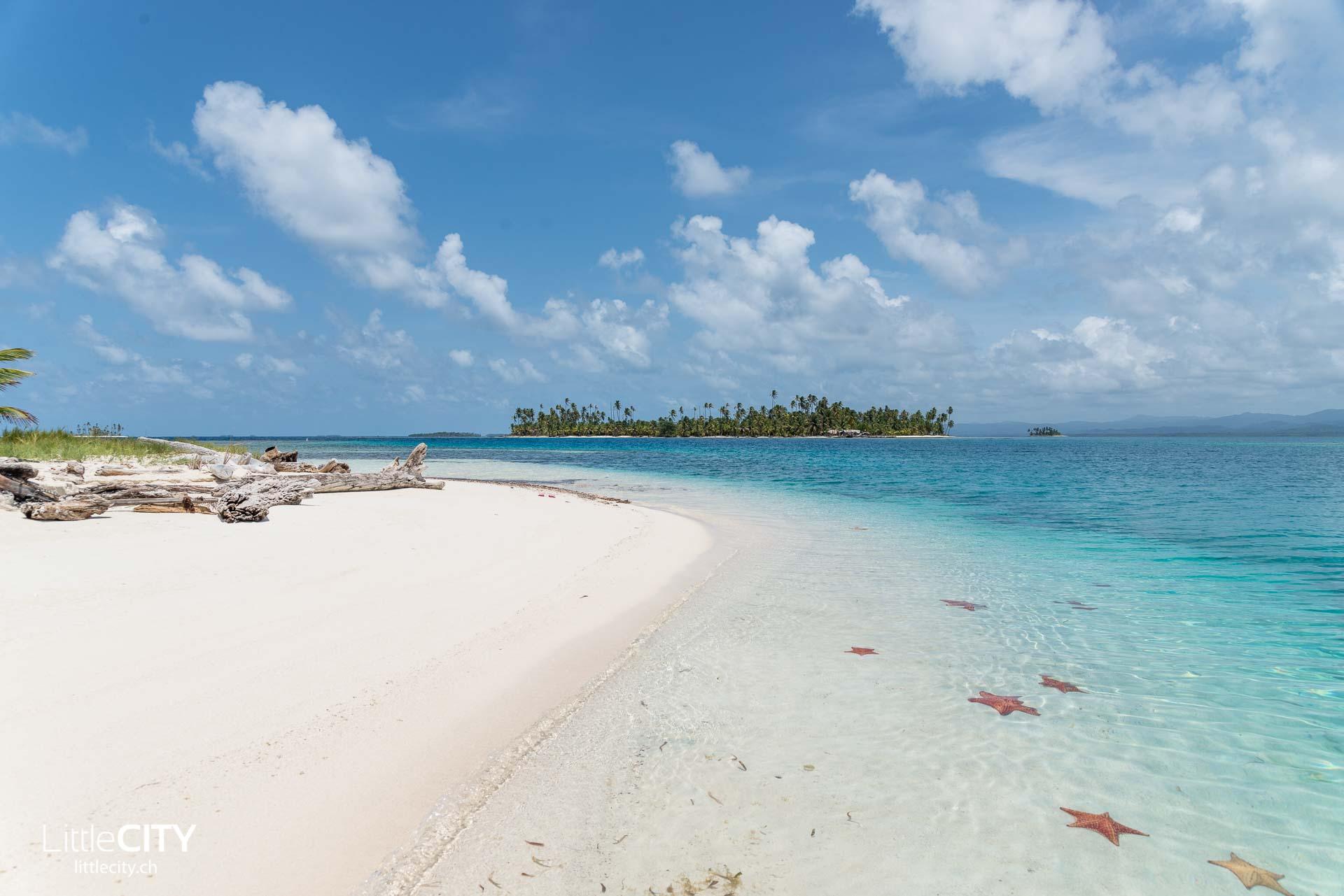 San Blas Inseln Reisetipps Seesterne