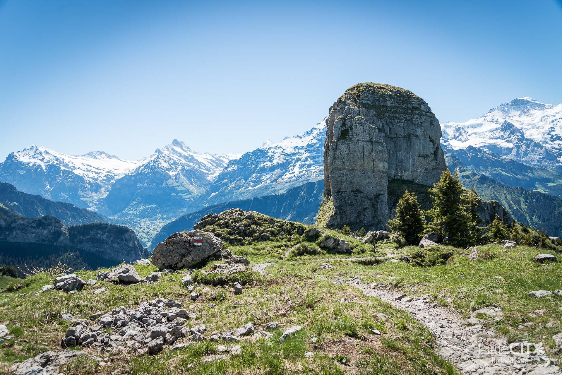 Schynige Platte Wanderung Jungfrau Bahnen LittleCITY-11