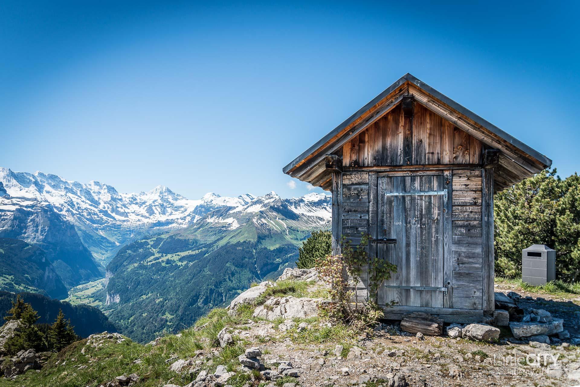 Schynige Platte Wanderung Jungfrau Bahnen LittleCITY-12