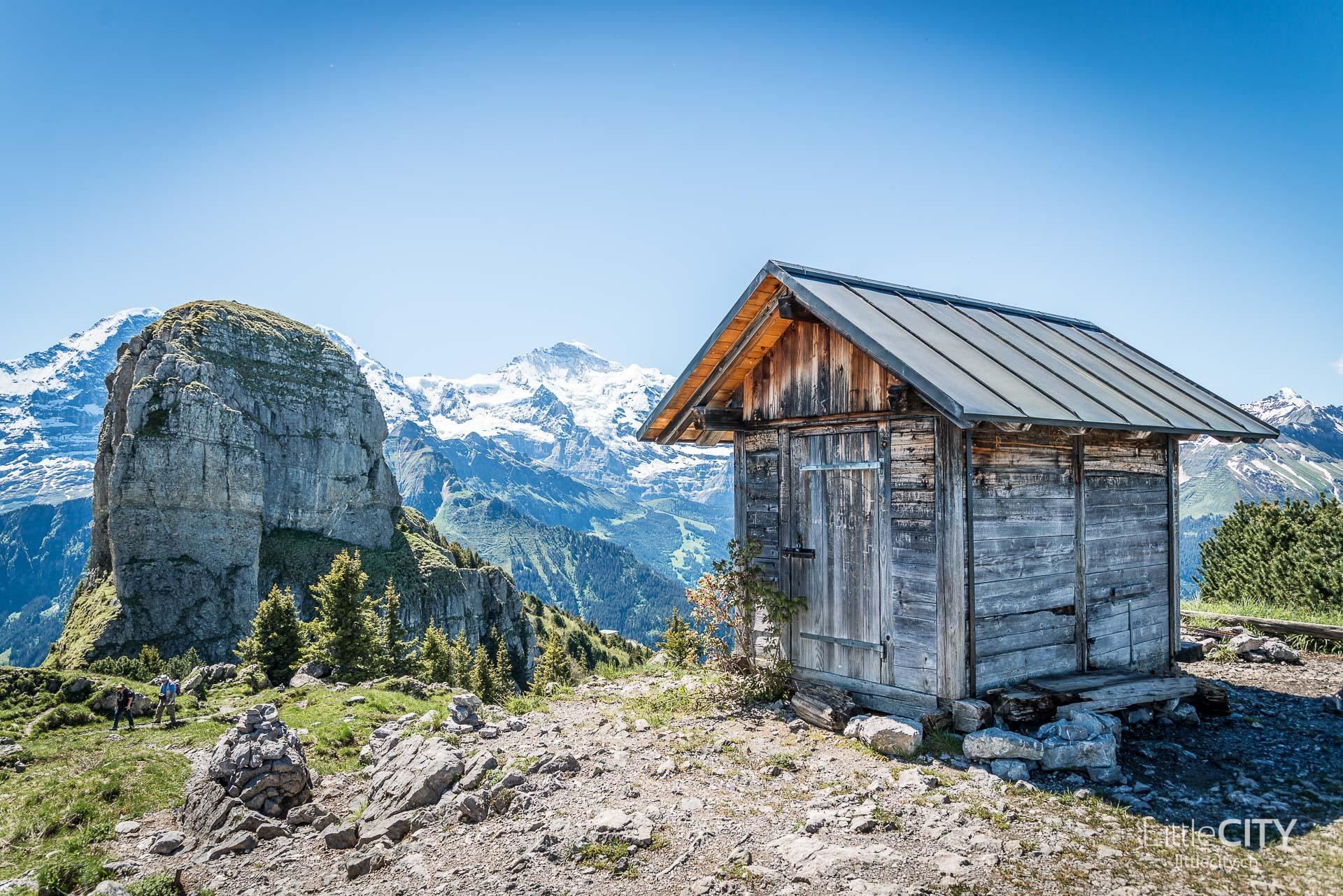 Schynige Platte Wanderung Jungfrau Bahnen LittleCITY-13