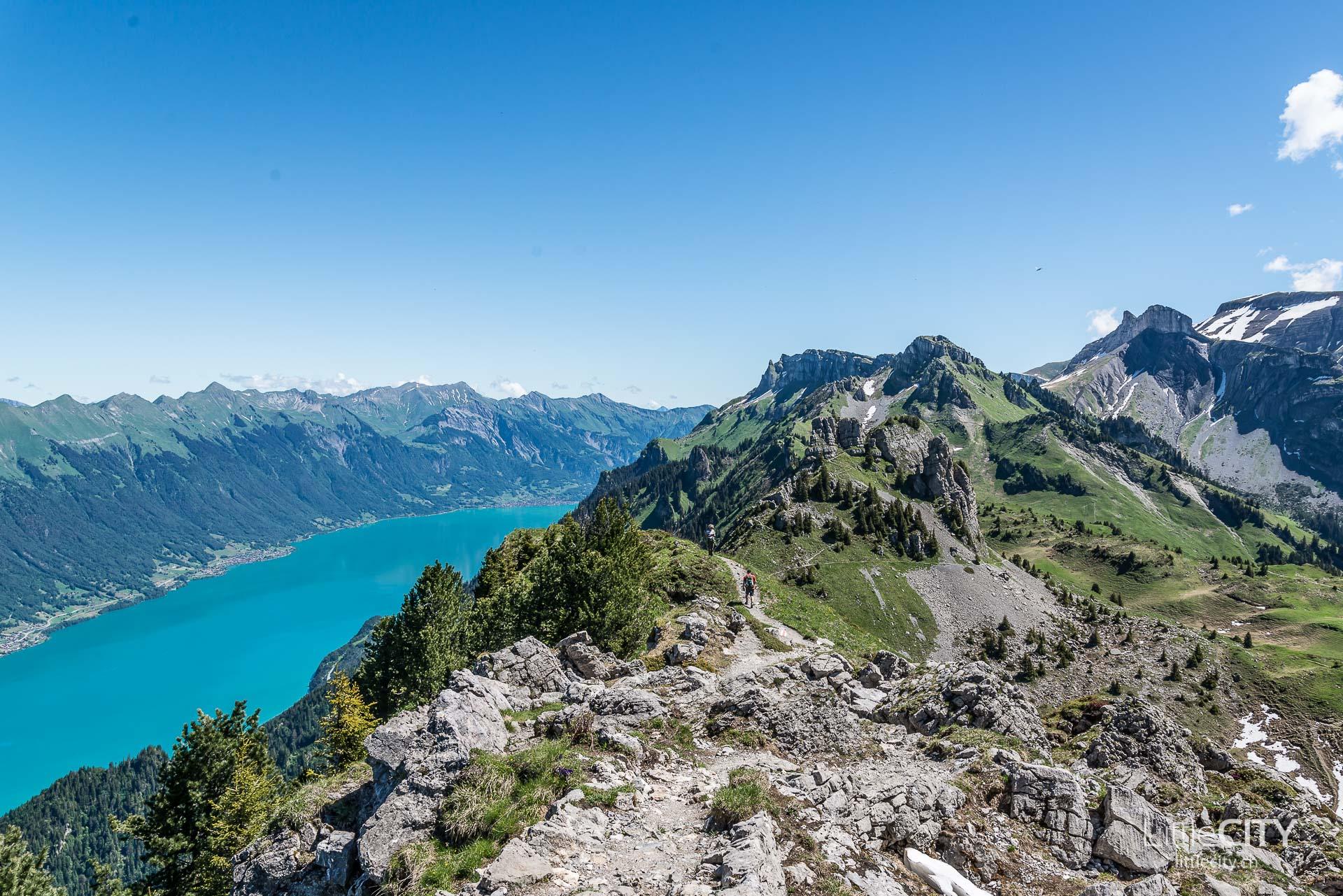 Schynige Platte Wanderung Jungfrau Bahnen LittleCITY-14