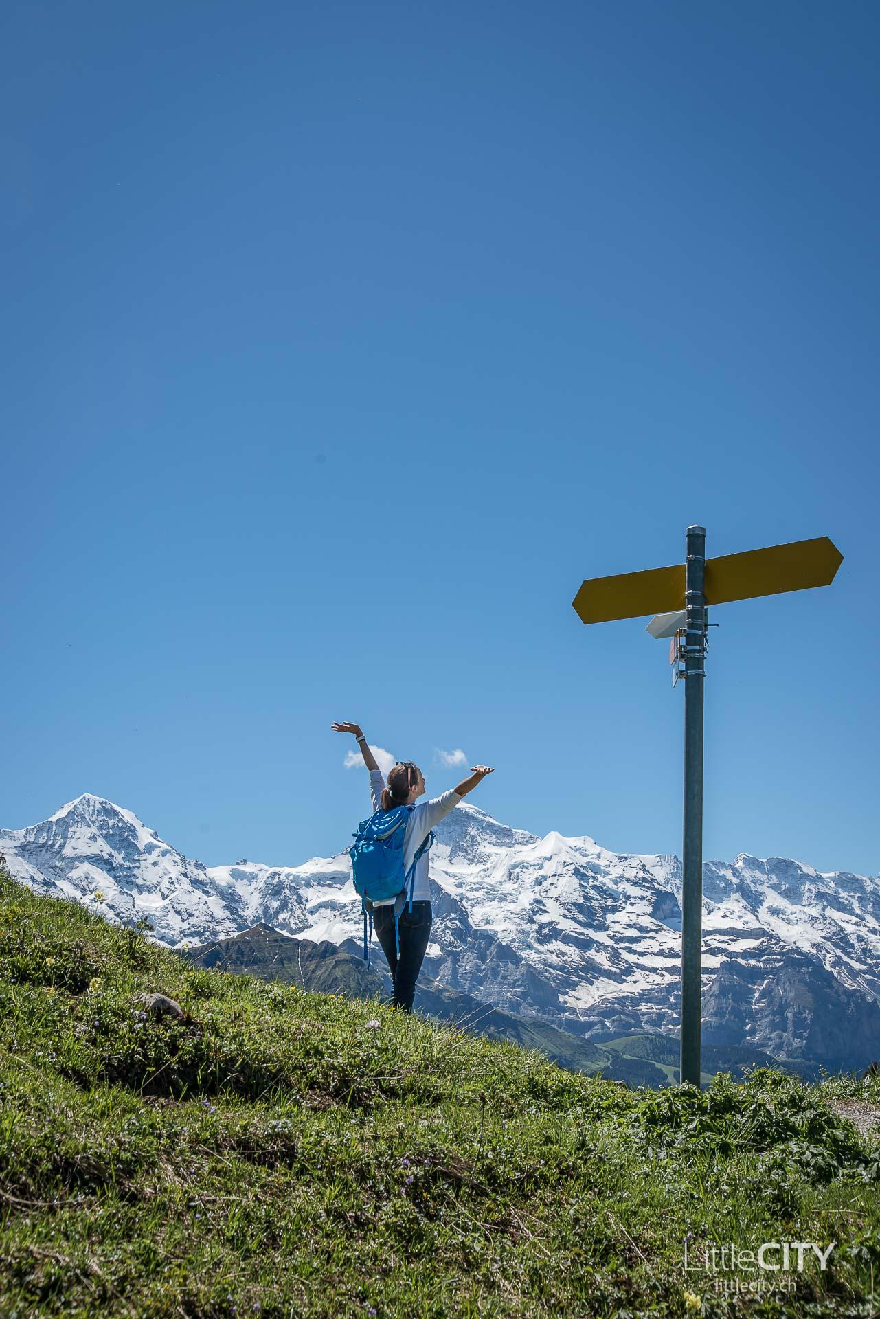 Schynige Platte Wanderung Jungfrau Bahnen LittleCITY-18