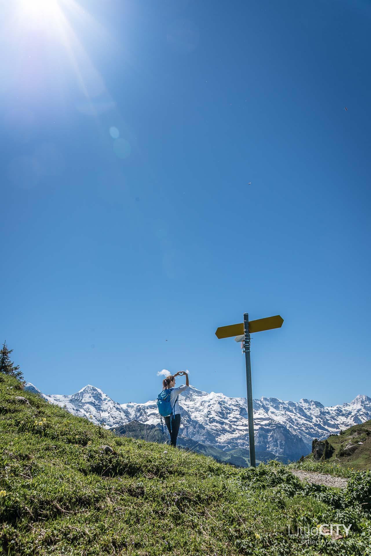 Schynige Platte Wanderung Jungfrau Bahnen LittleCITY-19