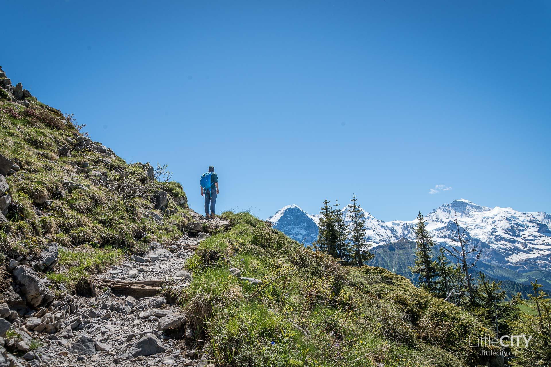 Schynige Platte Wanderung Jungfrau Bahnen LittleCITY-20