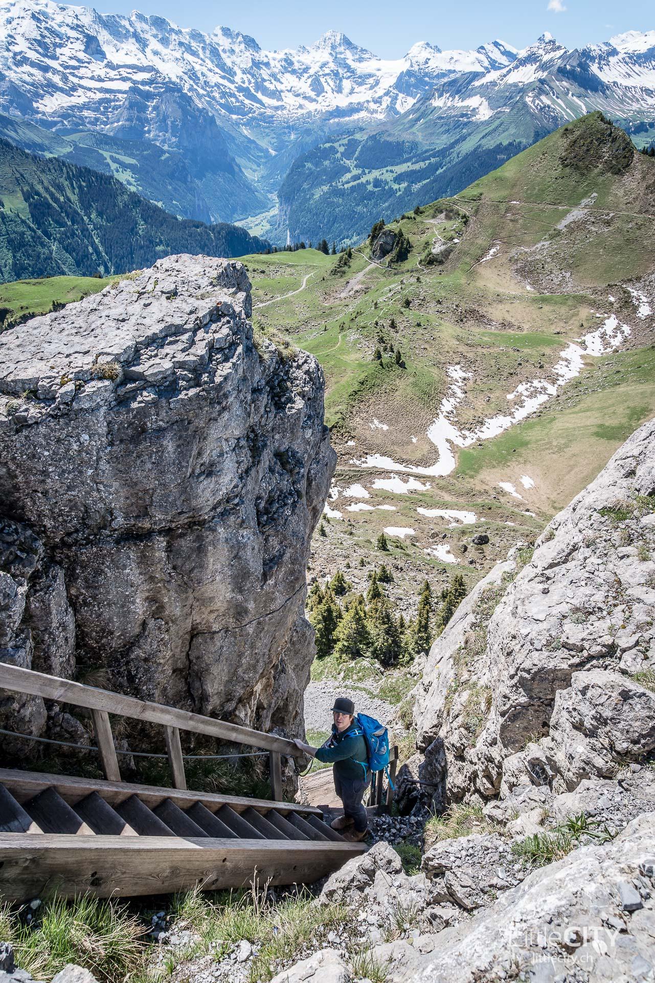 Schynige Platte Wanderung Jungfrau Bahnen LittleCITY-23