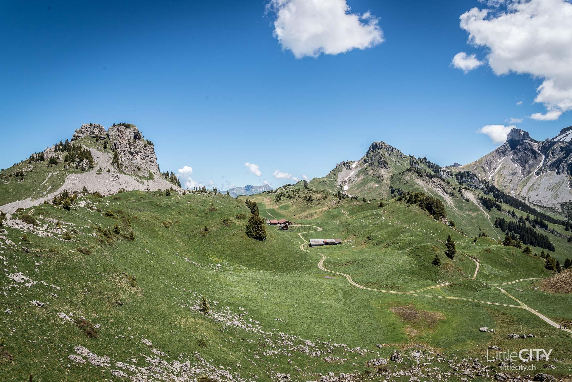 Schynige Platte Wanderung Jungfrau Bahnen LittleCITY-26