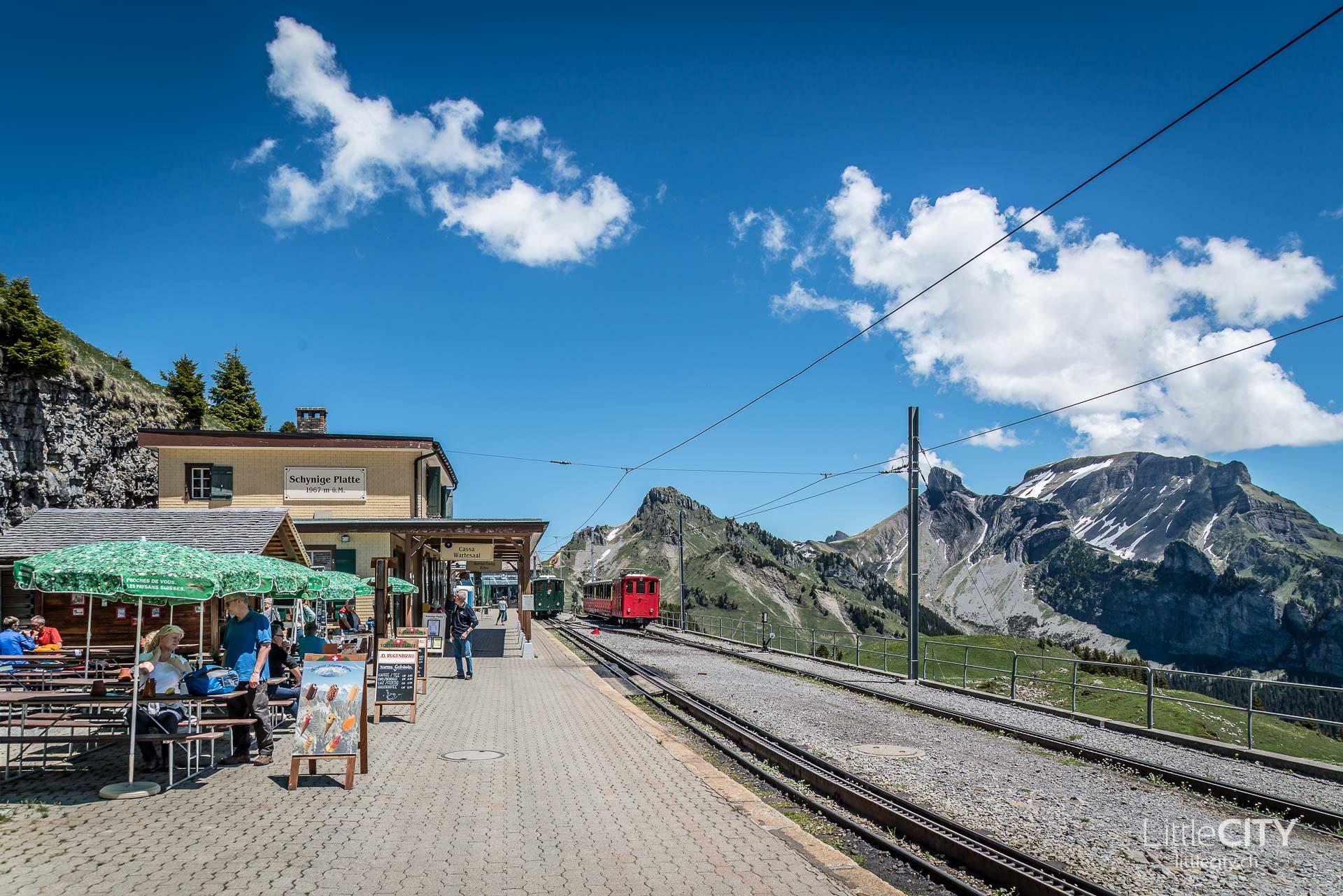 Schynige Platte Wanderung Jungfrau Bahnen LittleCITY-28