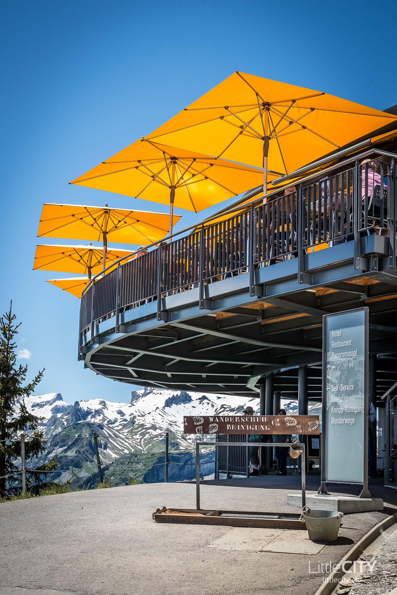 Schynige Platte Wanderung Jungfrau Bahnen LittleCITY-29