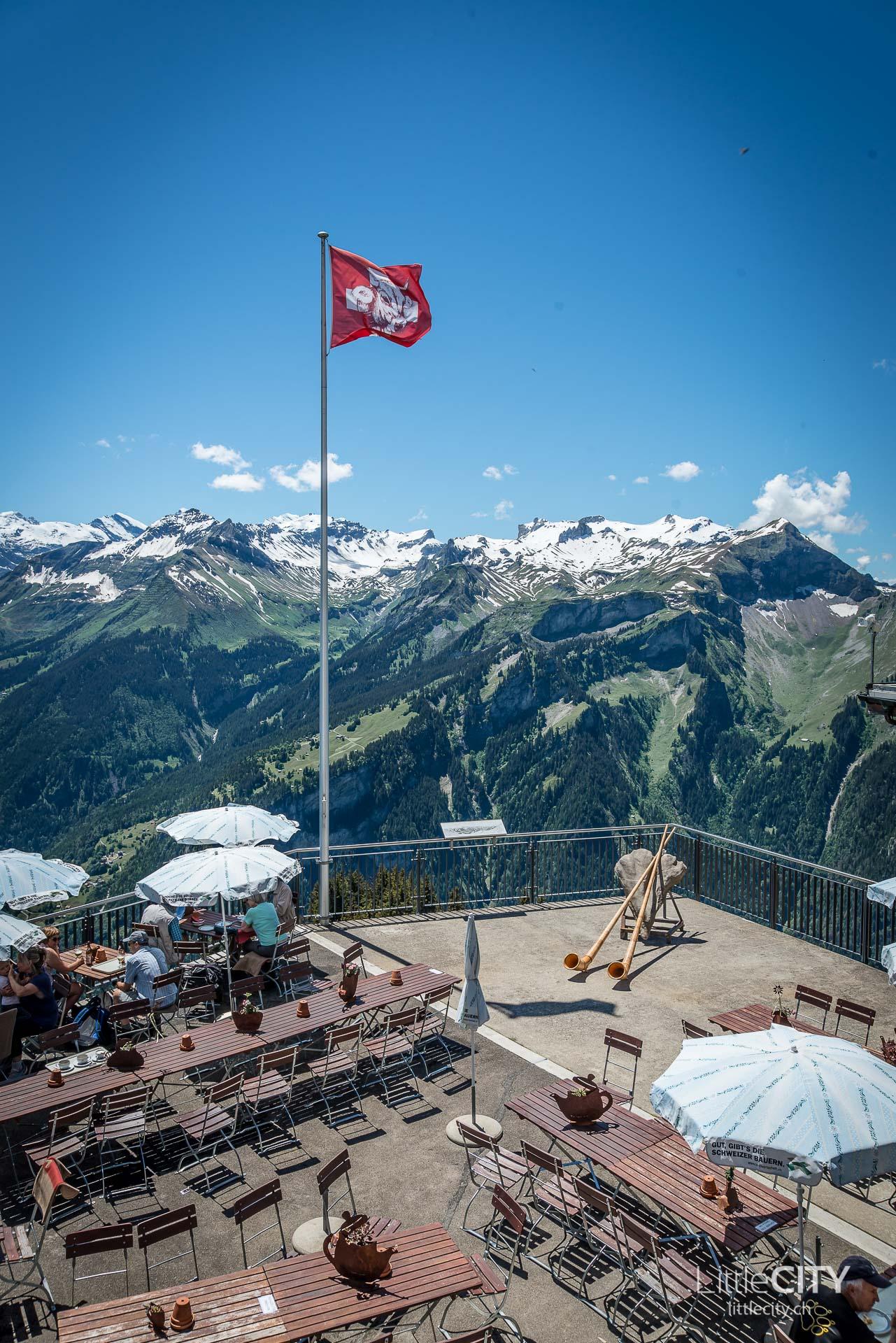 Schynige Platte Wanderung Jungfrau Bahnen LittleCITY-30
