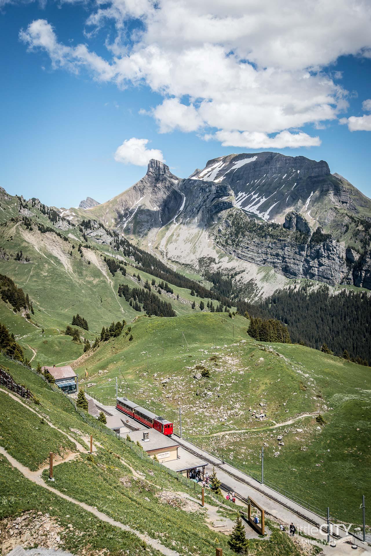 Schynige Platte Wanderung Jungfrau Bahnen LittleCITY-33