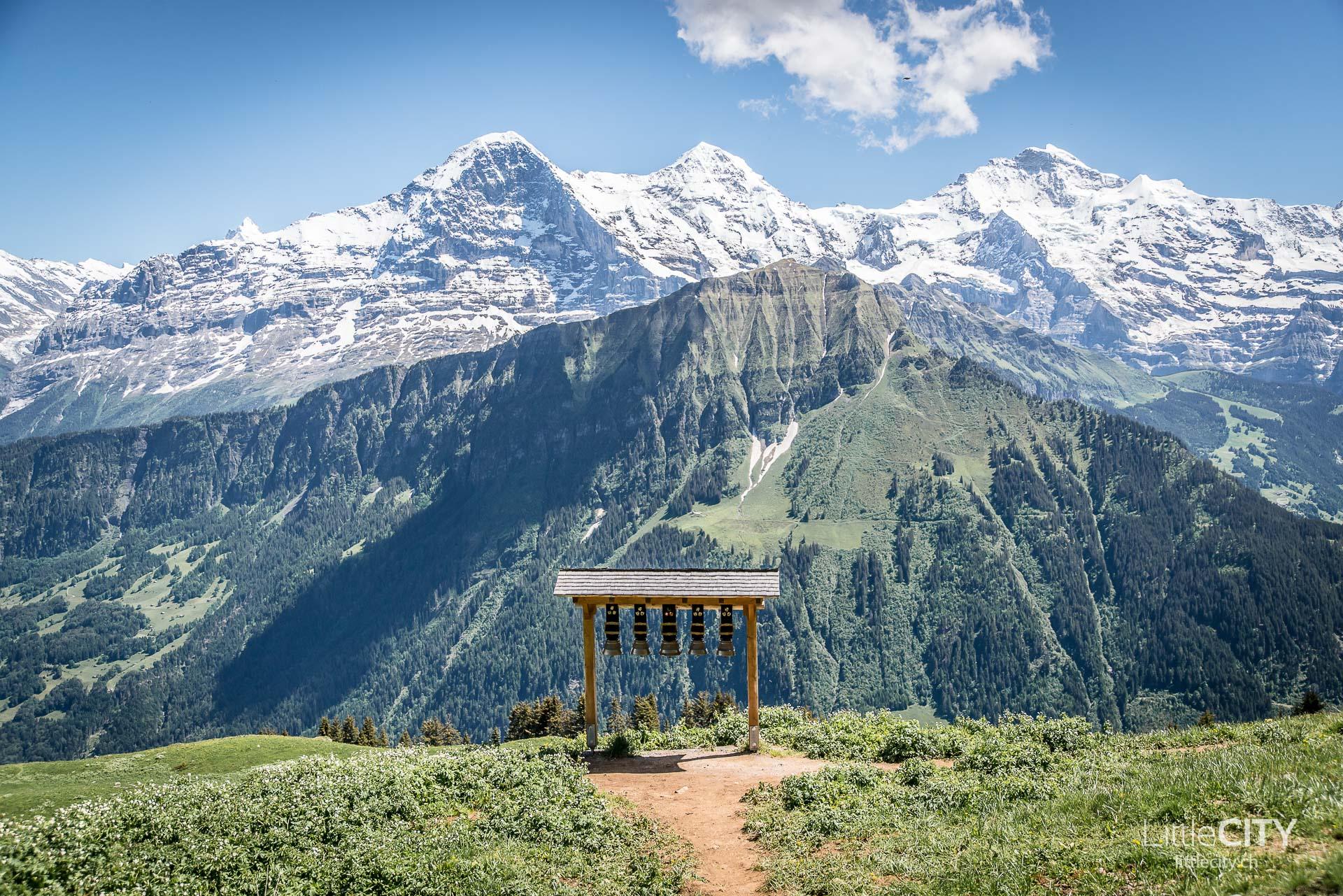 Schynige Platte Wanderung Jungfrau Bahnen LittleCITY-34