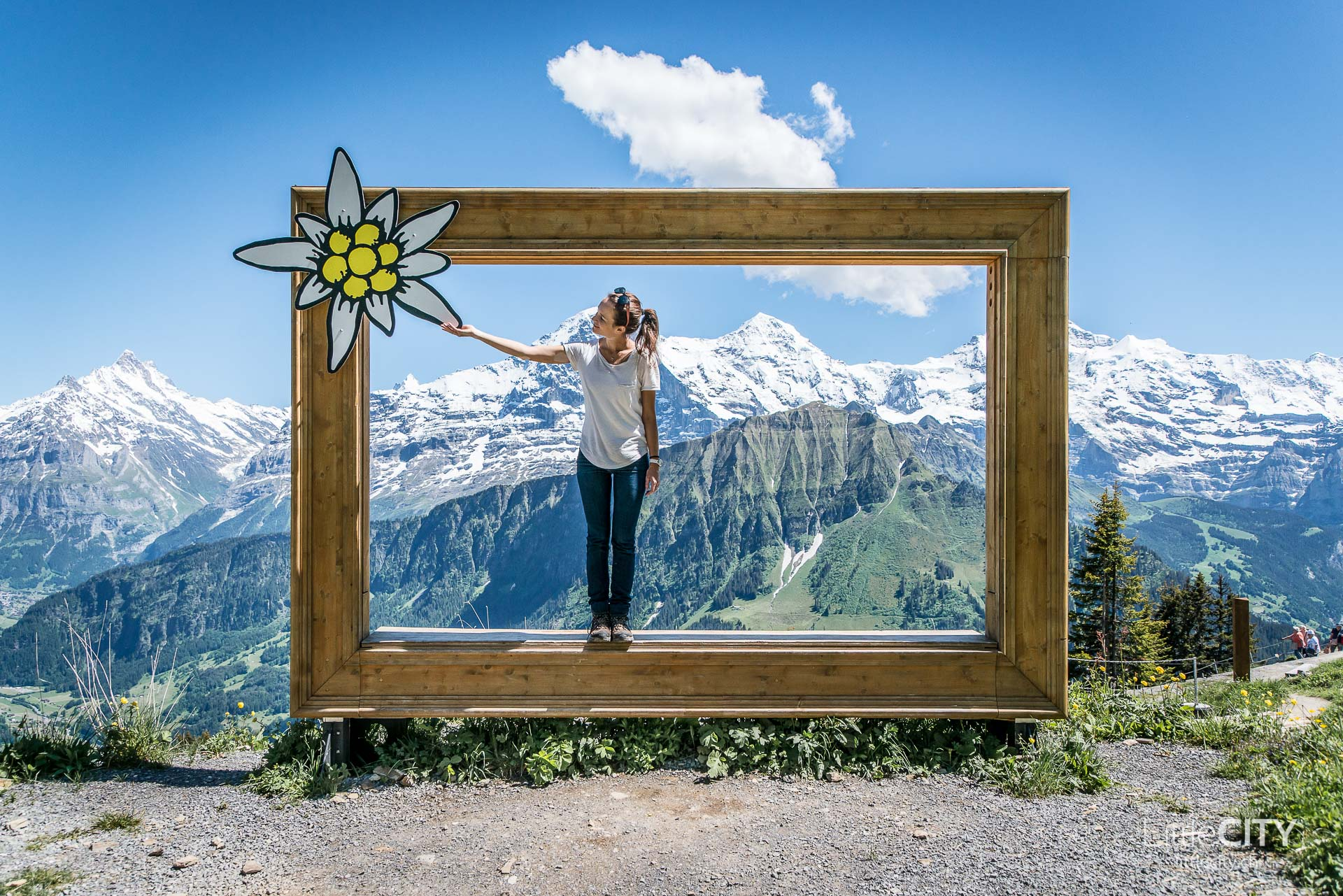 Schynige Platte Wanderung Jungfrau Bahnen LittleCITY-38