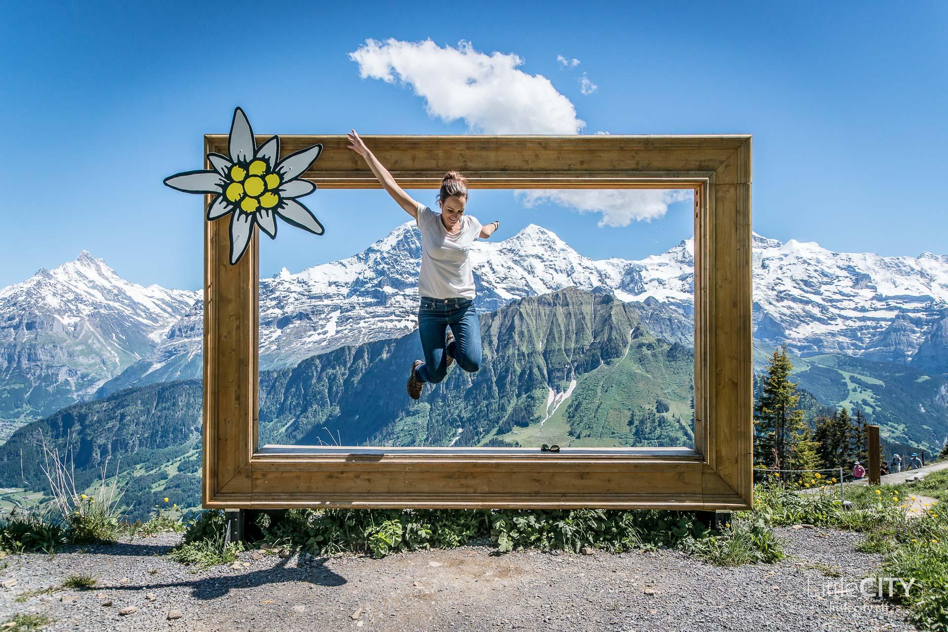 Schynige Platte Wanderung Jungfrau Bahnen LittleCITY-39