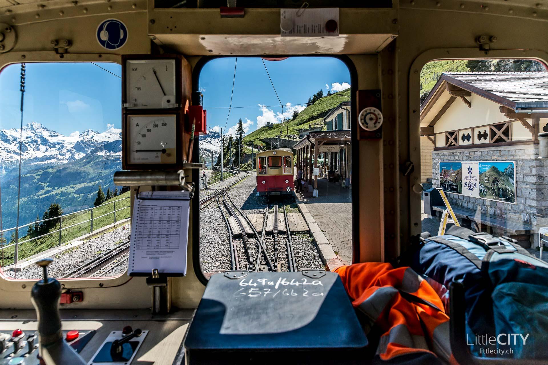 Schynige Platte Wanderung Jungfrau Bahnen LittleCITY-43