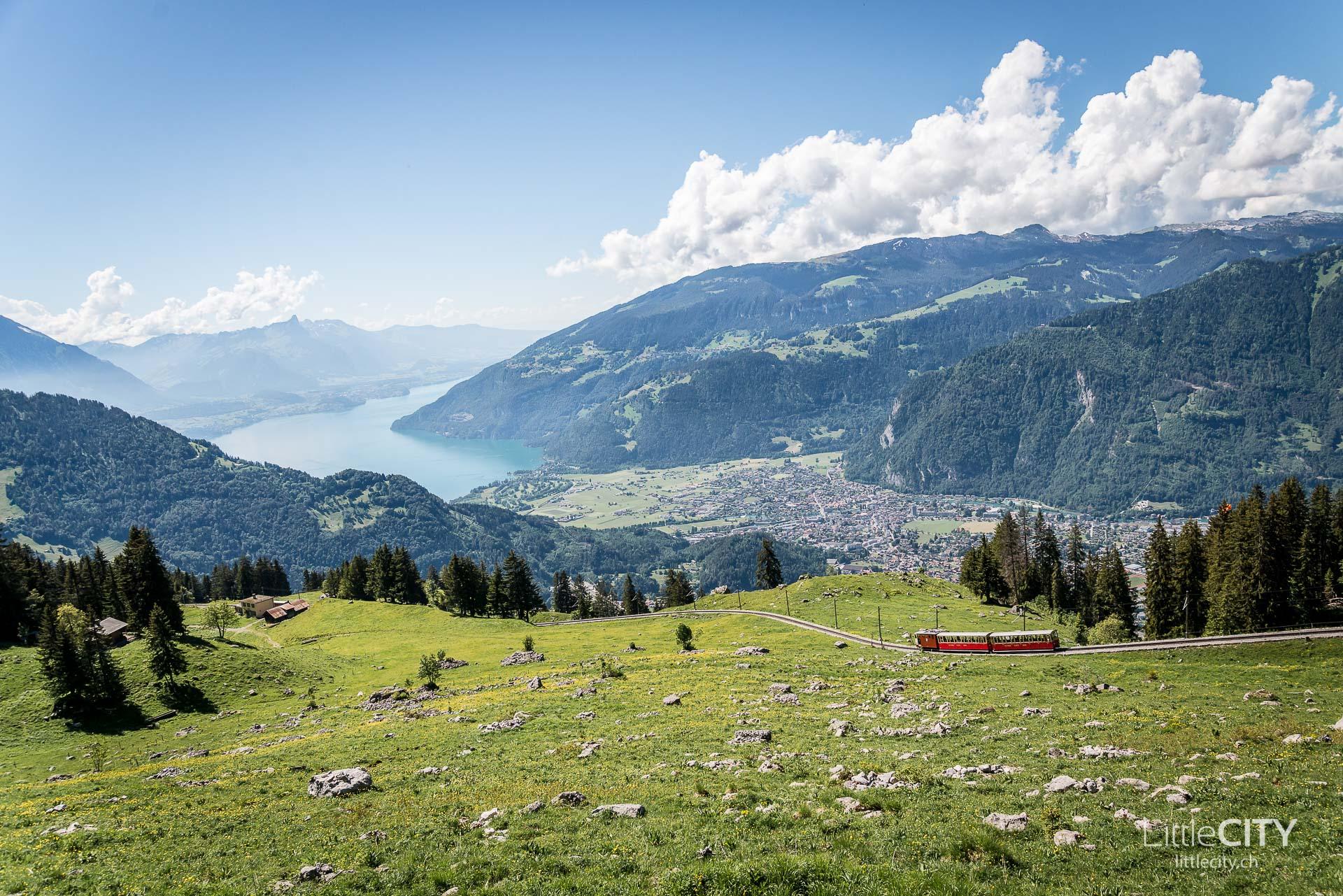 Schynige Platte Wanderung Jungfrau Bahnen LittleCITY-46