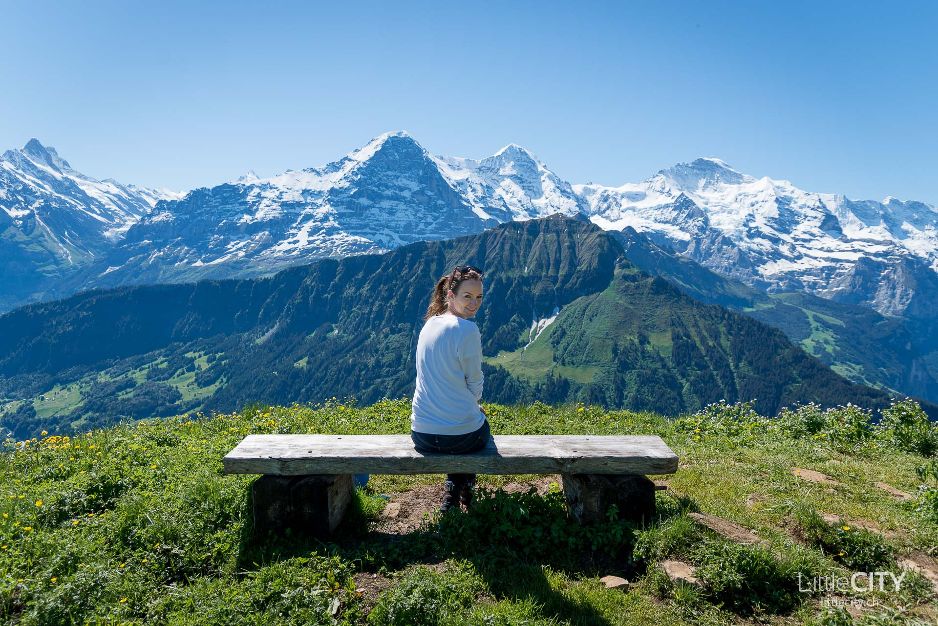 Schynige Platte Wanderung Jungfrau Bahnen LittleCITY-7