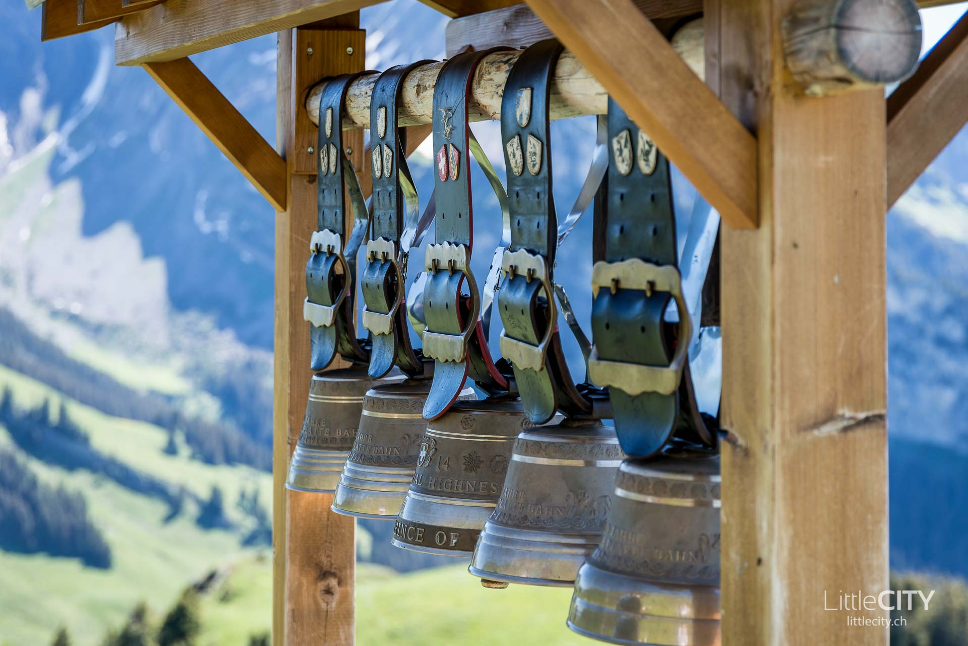 Schynige Platte Wanderung Jungfrau Bahnen LittleCITY-9