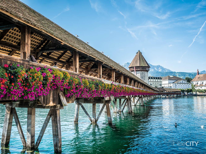 Luzern Kappelbrücke Sommer-1