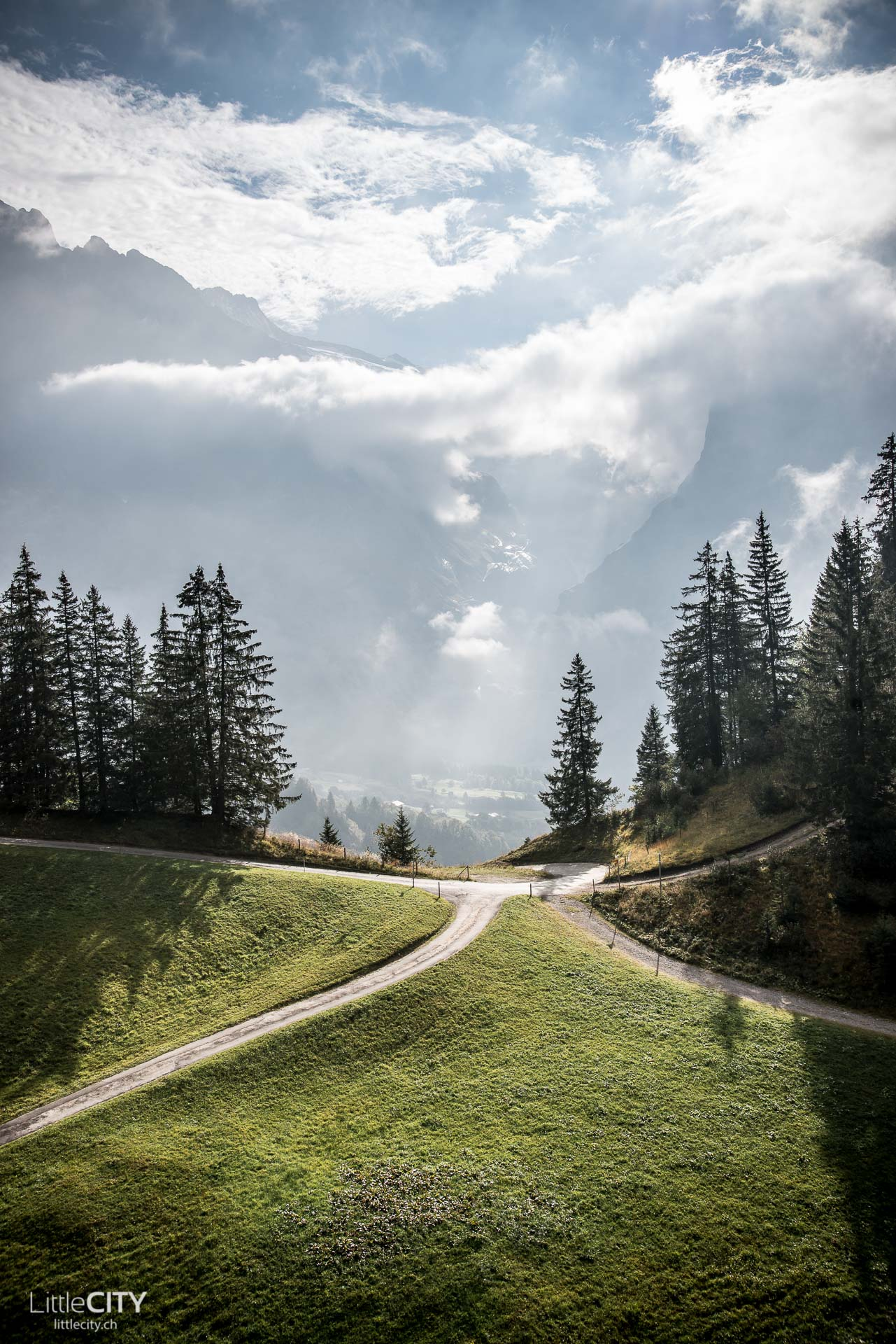 grindelwald-first-action-5