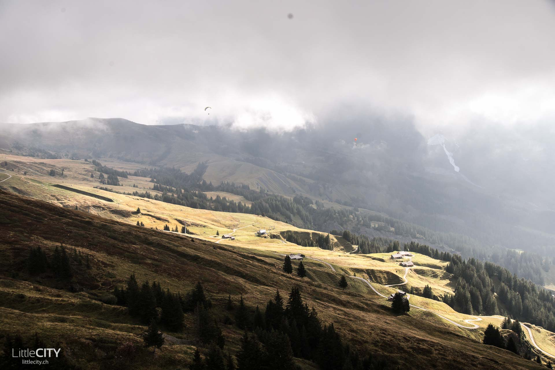 grindelwald-first-action-7