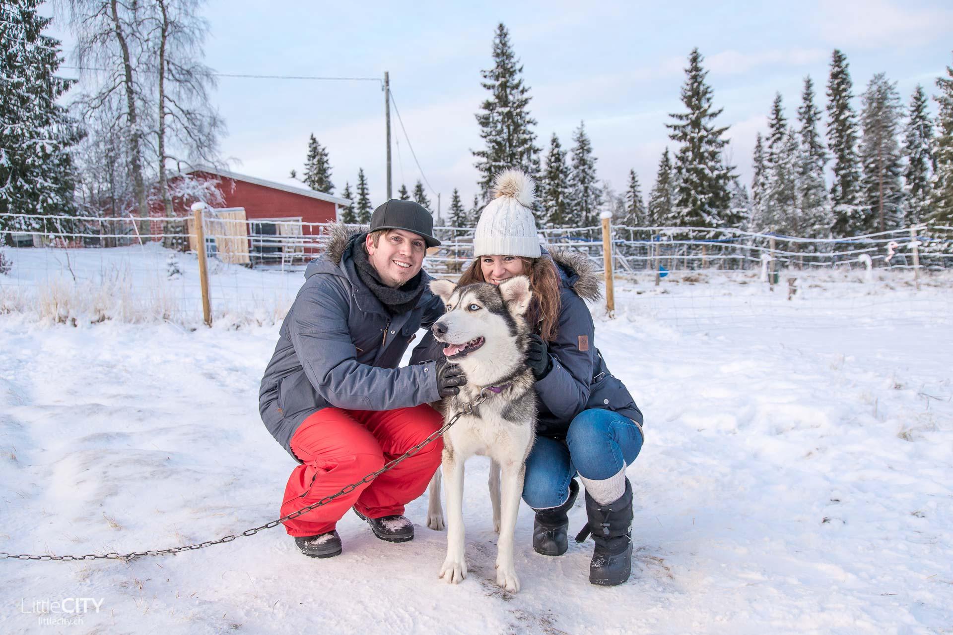 Finnland Husky Schlitten fahren