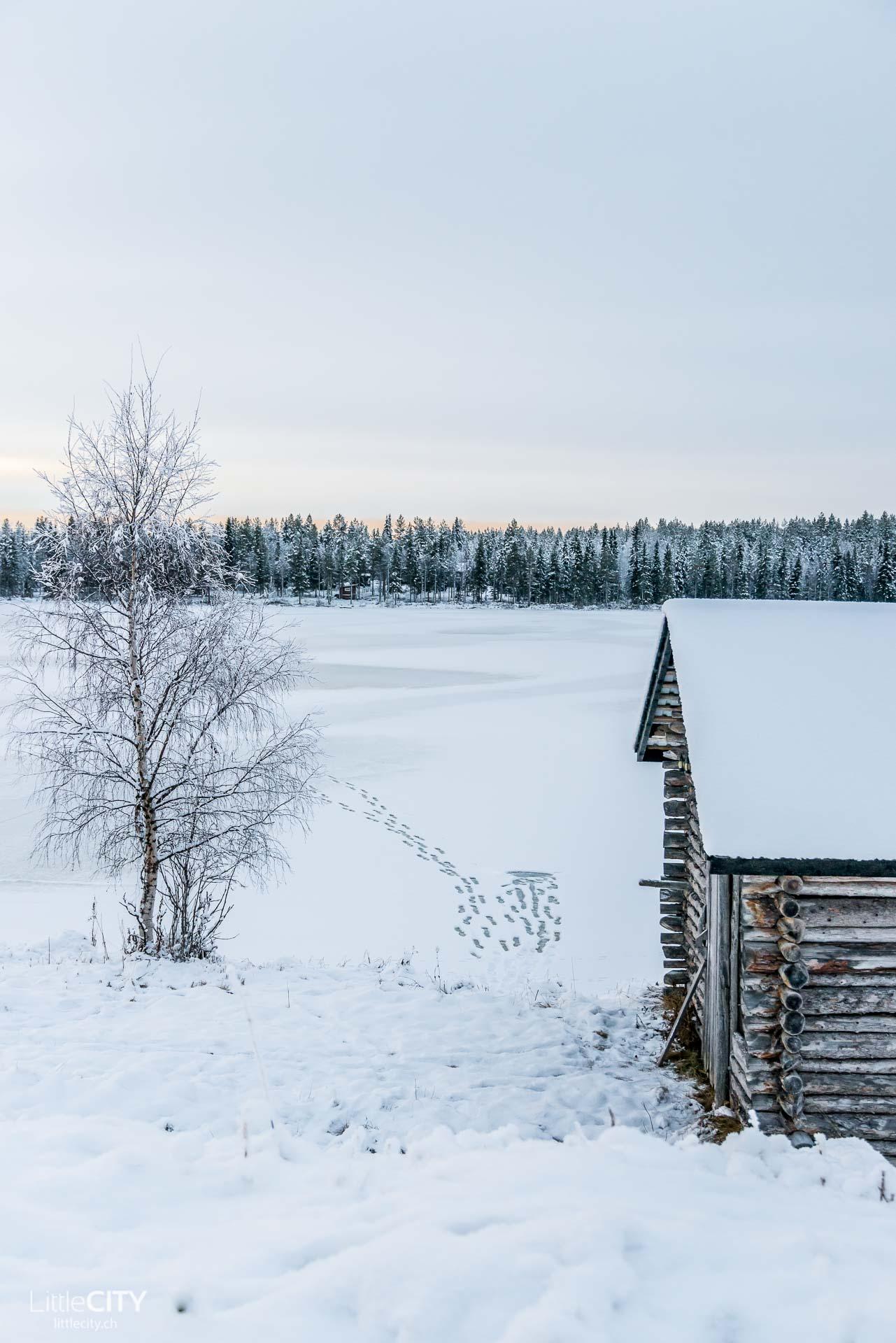 Ruka Kusamo im Lappland, Finnland