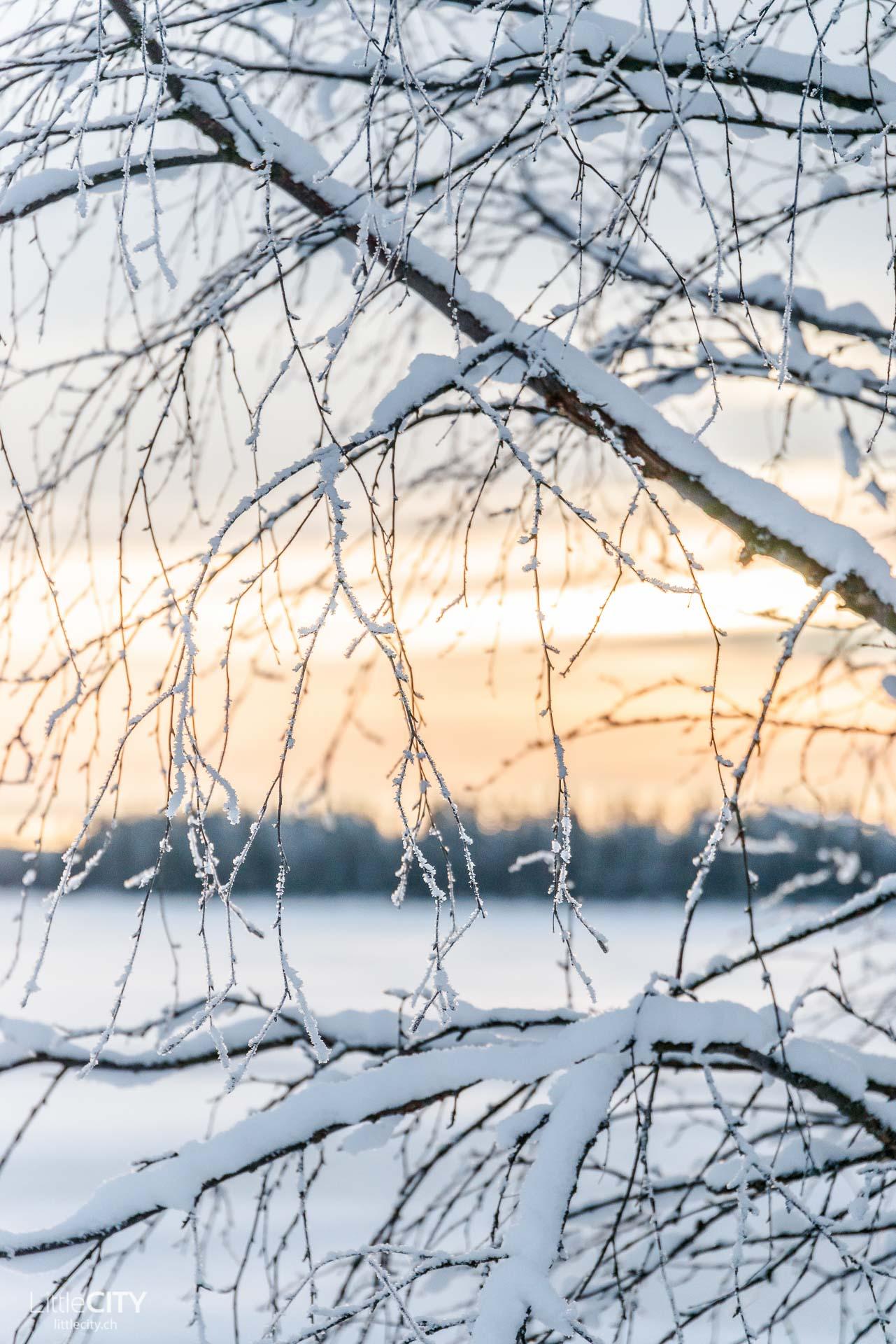 ruka-kusamo-lappland-winter