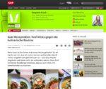 SRF Virus über Food Blogs