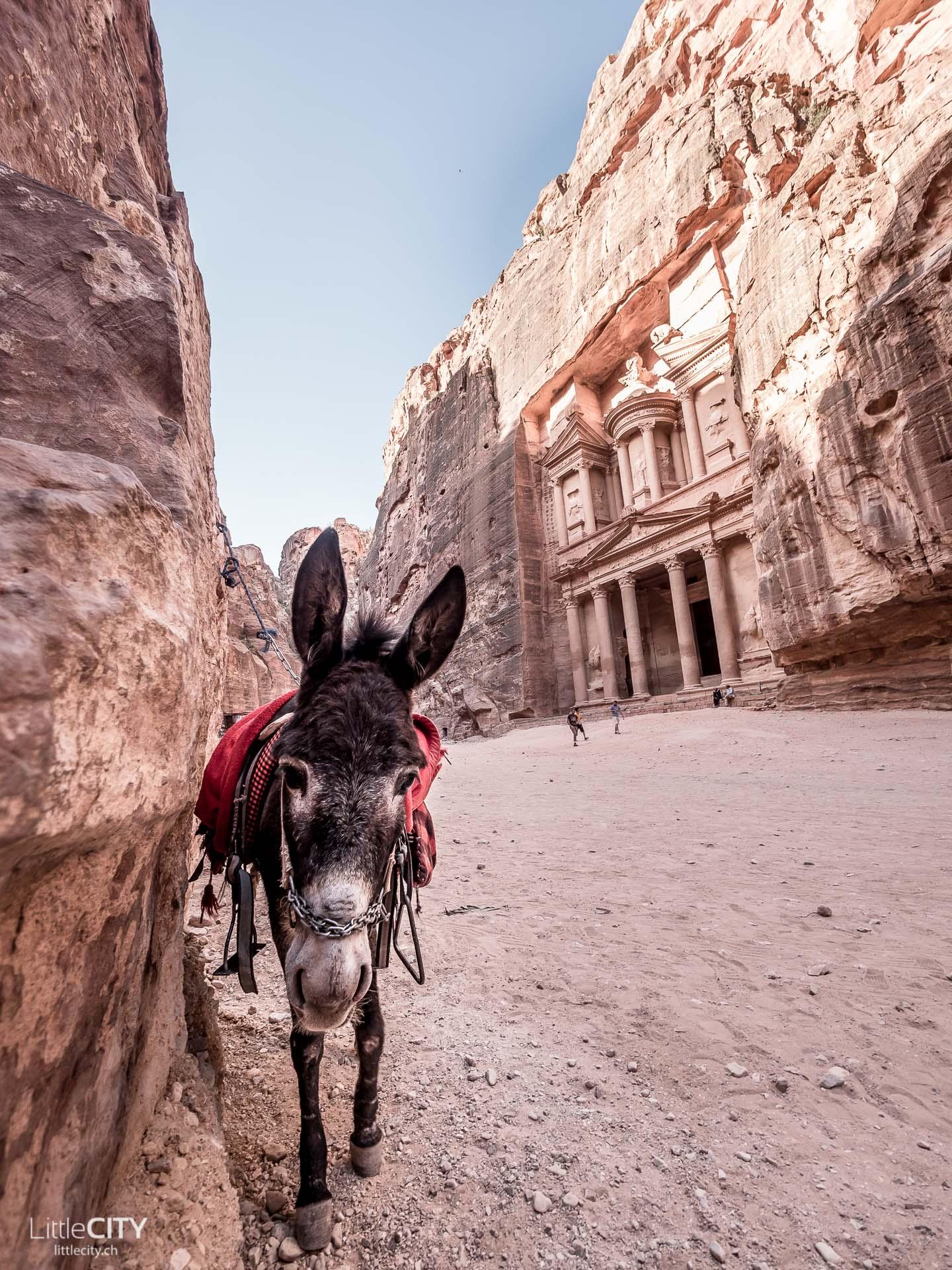 Petra Jordanien Reisetipp, Fakten, Bauwerke