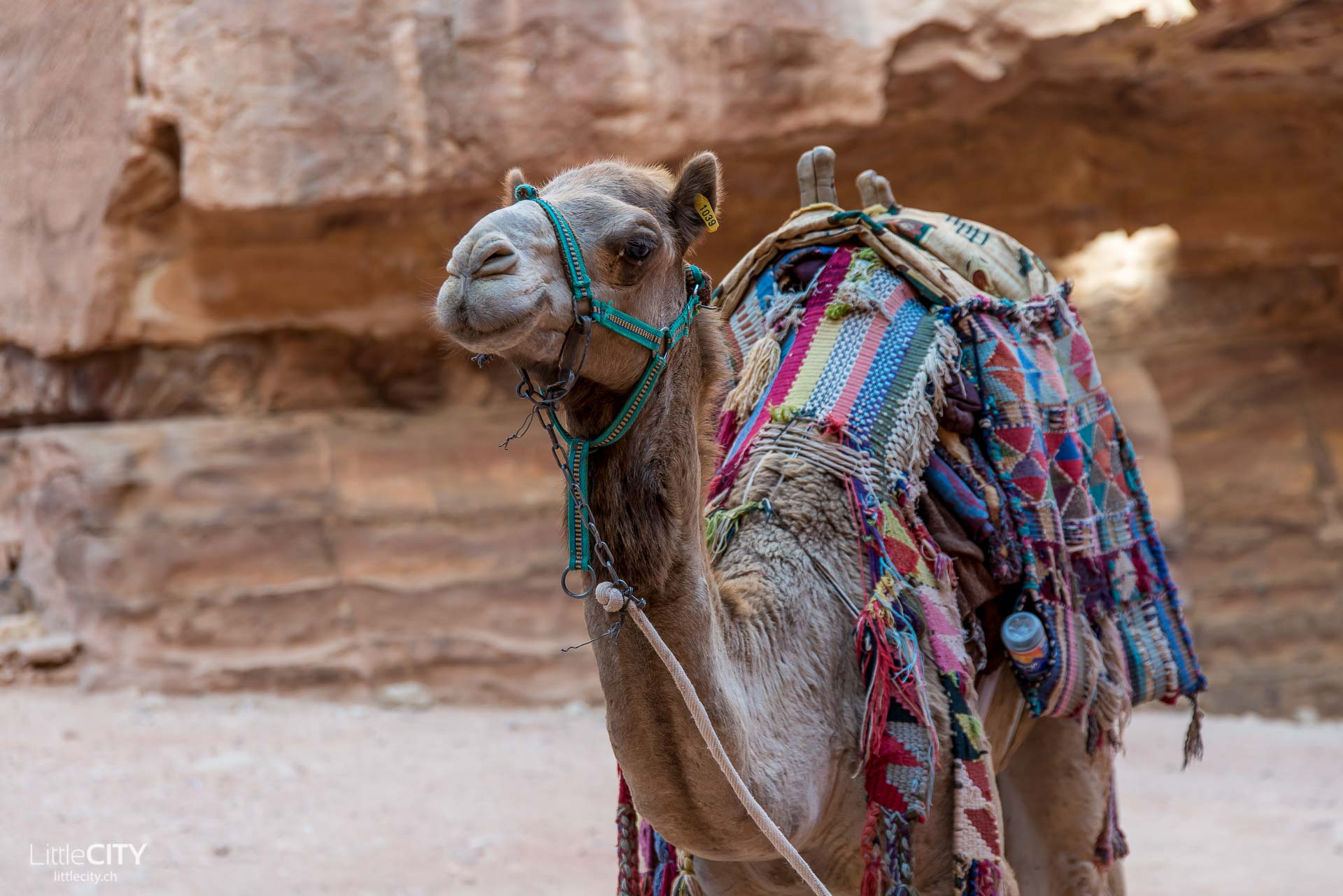 Petra Jordanien Reisetipp
