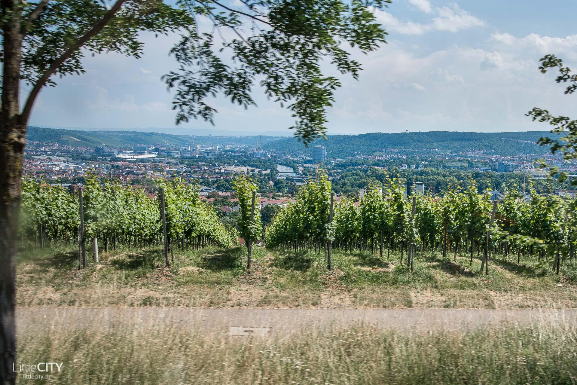 Stuttgart Sehenswürdigkeiten Weinberge