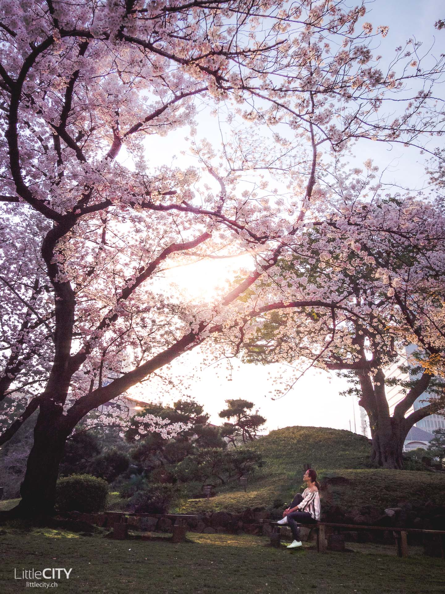 Tokio Reisetipps: Park in Minato