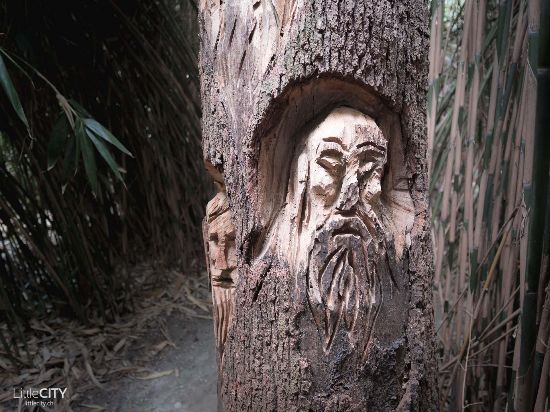 Brissago Inseln Bambus Wald
