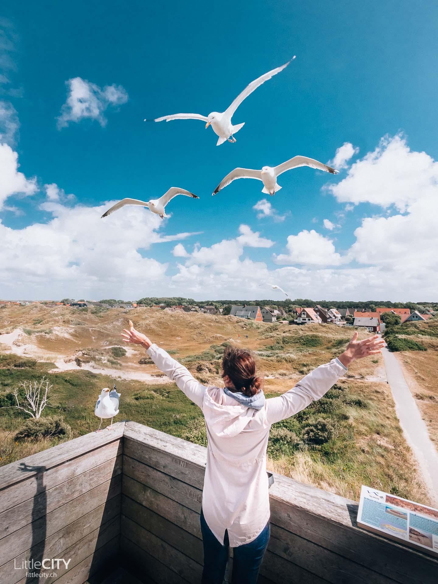 Norderney Dünen Ausflugstipp