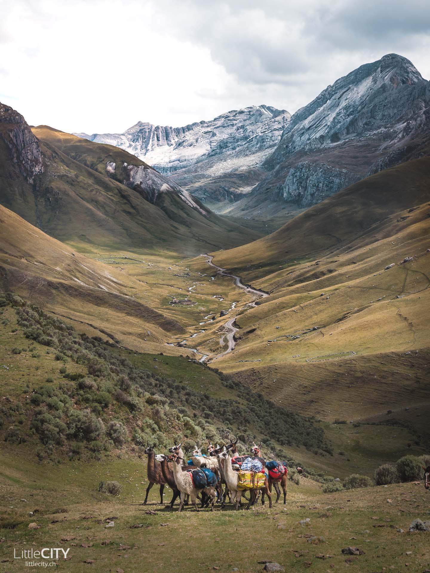 Peru Trecking Cordillera Blanca Rondoy Lamas