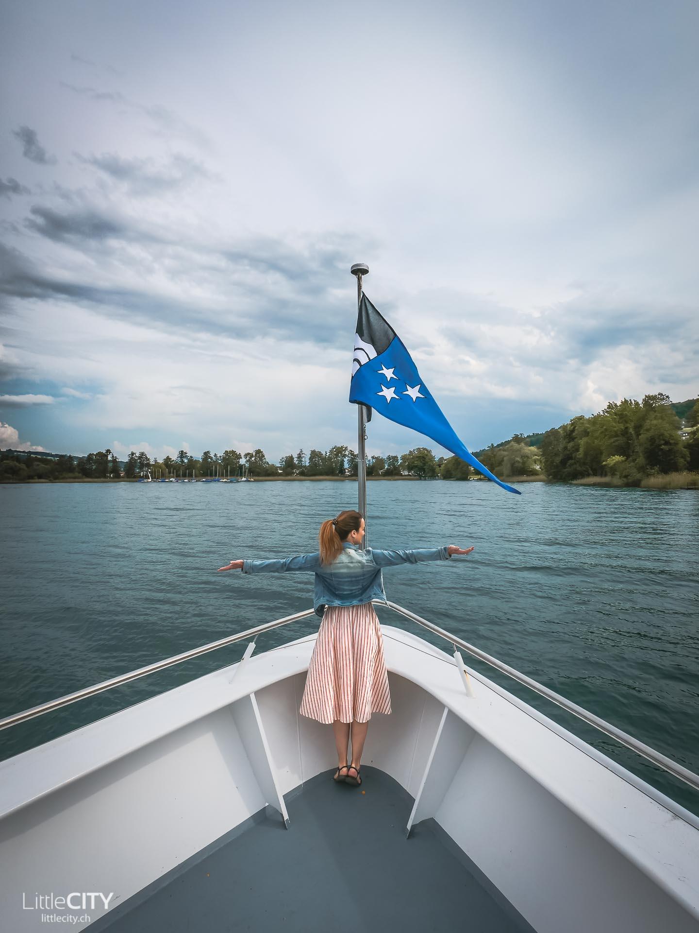 Hallwilersee Schifffahrt Ausflug See Schweiz
