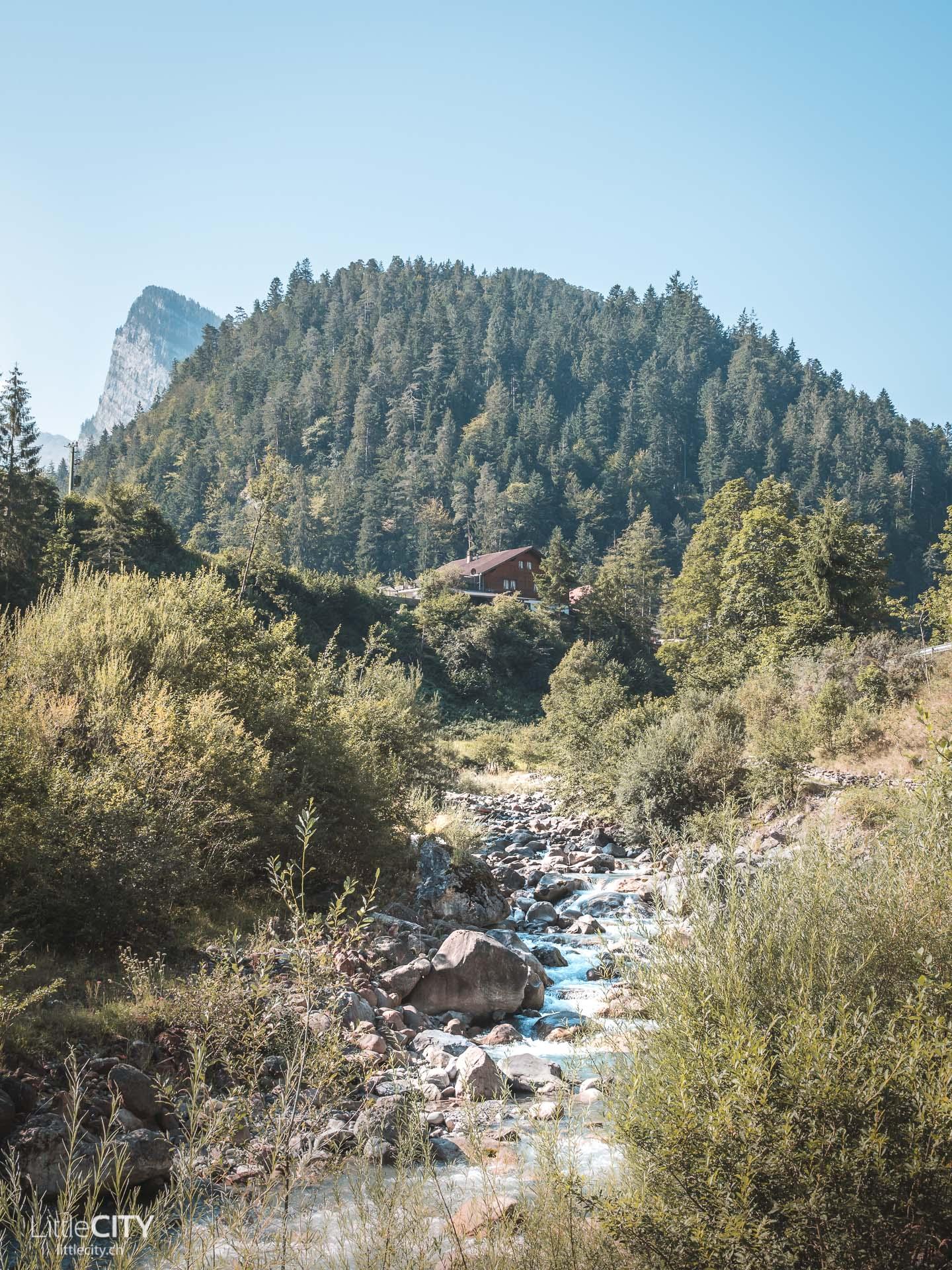 Diemtigtal Wildbach Talwanderweg