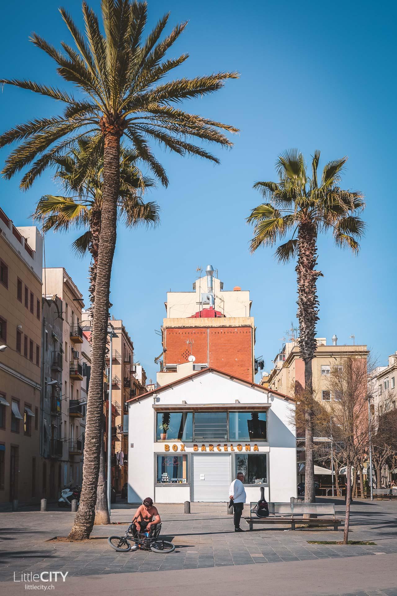 Barcelona Sehenswürdigkeiten Barceloneta