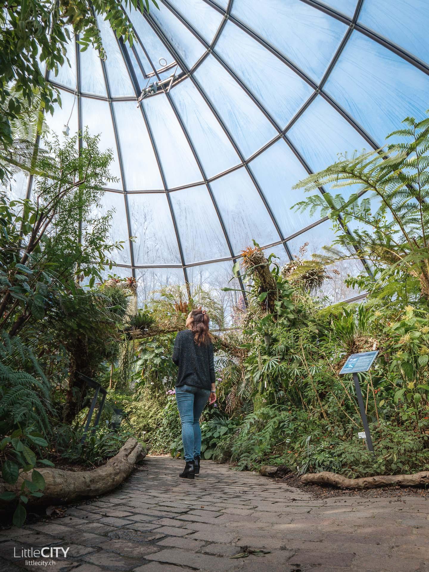 Neuer Botanischer Garten Zürich Reisetipps
