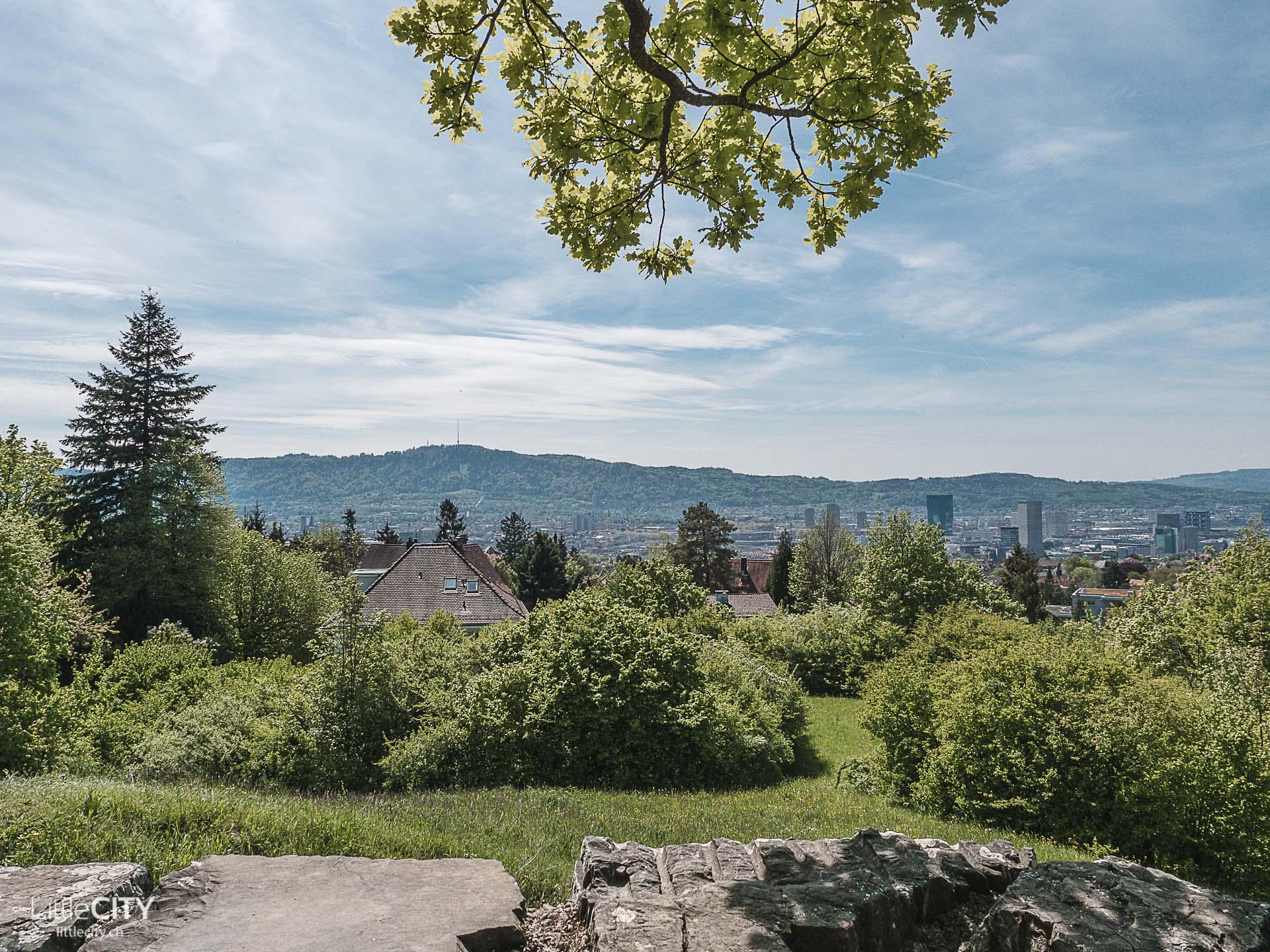 Monte Diggelmann Zürich Insider Tipps