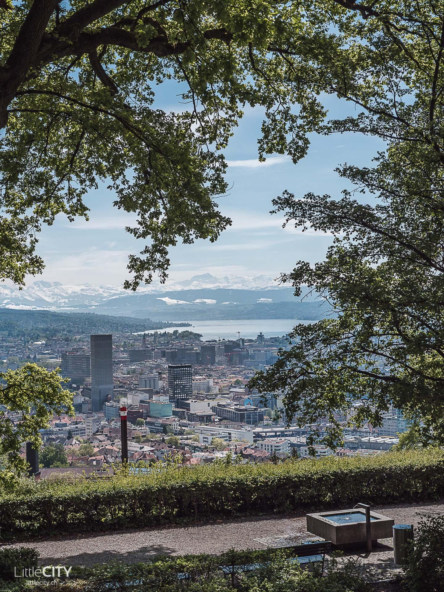 Zürich Aussicht vom Käferberg Waid